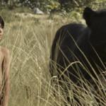 Mogli: O Menino Lobo é a adaptação definitiva do clássico infantil