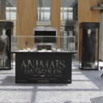 Animais Fantásticos ganha exposição no Shopping JK Iguatemi