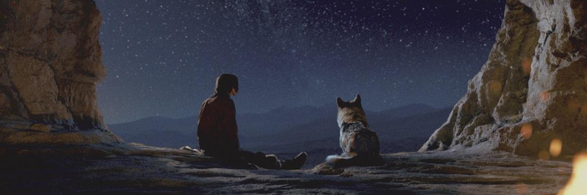 Alfa: Aventura mostra início da amizade entre homem e animal