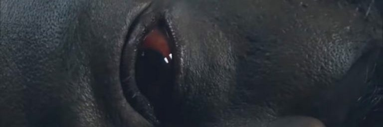 SDCC 2020: sexta temporada de Fear the Walking Dead ganha teaser